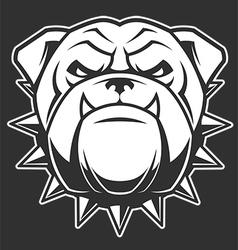 the head a fierce bulldog vector image