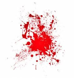 bloody splat vector image vector image