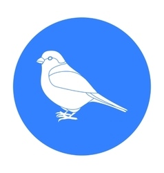 Bullfinch icon in black style isolated on white vector image vector image