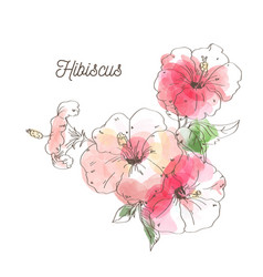 luxury hibiscus flower on white background vector image vector image