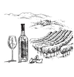hand drawn bottle and glass of wine vector image