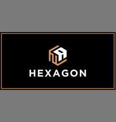 na hexagon logo design inspiration vector image