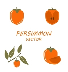 Persimmon icons set vector
