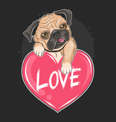 pug dog lover valentine puppy artwork vector image