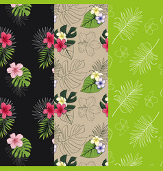 Set of 3 seamless patterns with tropical designs vector