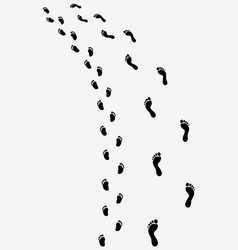 Trail of bare feet vector