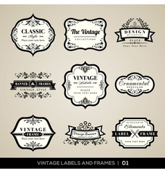 Vintage labels and frames design elements vector image
