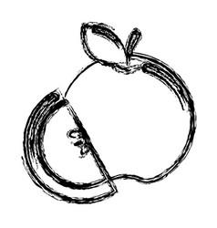 contour apple fruit icon stock vector image vector image