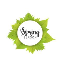 Spring season letter and green leaves white vector