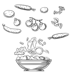 Cooking fresh healthy vegetarian salad sketch vector