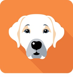 dog Labrador Retriever icon flat design vector image