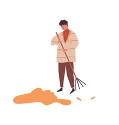 man raking heap autumn leaves use rake vector image