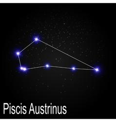 Piscis austrinus constellation with beautiful vector