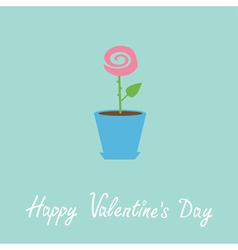 Rose in pot Love card Happy Valentines Day vector
