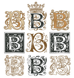 Vintage initial letter b with baroque decorations vector