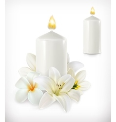 White candle and white flowers vector image vector image