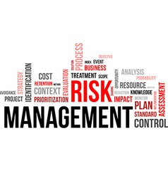 word cloud risk management vector image