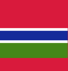 gambia country flat style flag vector image vector image