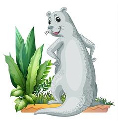 Cartoon Otter vector image