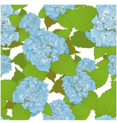 Seamless background with blue hydrangea vector image vector image