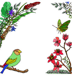 Frame of flowers butterfly and bird vector