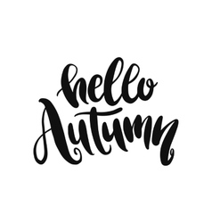 Hand drawn lettering on white background vector