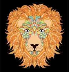 Head of lion on black background vector