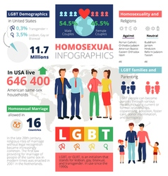 Homosexual Infographics Template vector