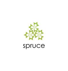 leaf spruce logo vector image