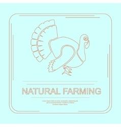 Logotype of turkey in flat design vector