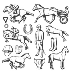 Vintage Equestrian Sport Elements Collection vector