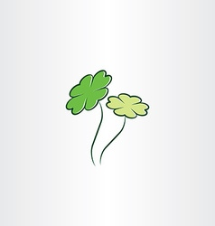 clover plant luck vector image