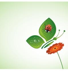 Summer beetle vector