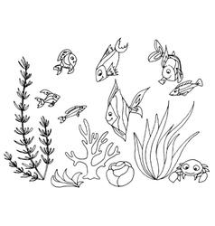 Tropical fish hand drawn design set vector image
