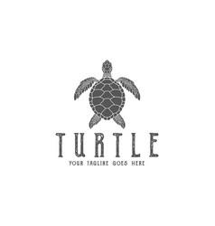 turtle logo vector image vector image