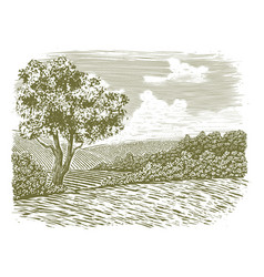 woodcut countryside scene vector image vector image