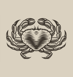 a sea crab in engraving style vector image