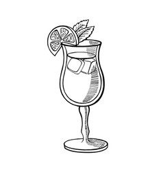Alcoholic cocktail hand drawn vector