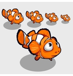Fun clown fish with big eyes icon for your design vector image