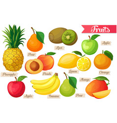 Icons fruit vector