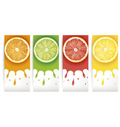 Orange slice juice background vector