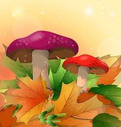 Red mushrooms and autumn leaves on a light vector