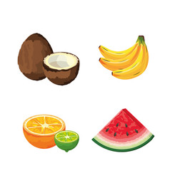 Set delicious organic fruit tropical nutrition vector