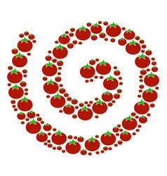 Spiral collage of tomato vector