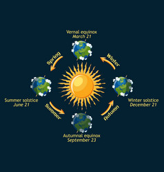 cycle of earth seasons of the year autumnal and vector image vector image