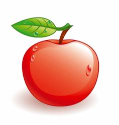 glossy apple vector image vector image