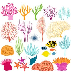 Underwater design elements vector image vector image