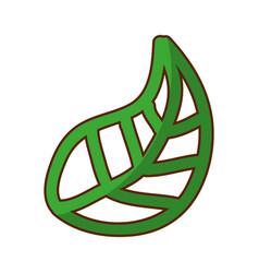 shadow green leaf cartoon vector image