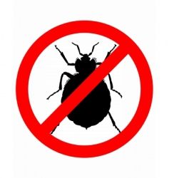 bedbugs prohibition sign vector image