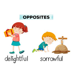 english opposite word of delightful and sorrowful vector image